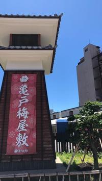 7月14日(日)亀戸梅屋敷で筆文字オーダー会開催します! - 筆耕アーティスト 道口久美子 BLOG