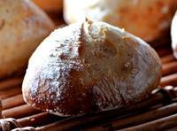 今日もパンを楽しむ会でした - 森の中でパンを楽しむ