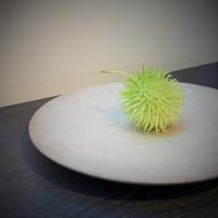 「青木良太 作品展」開催中です♪ - 工房IKUKOの日々