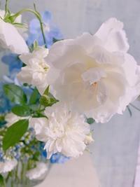 花時間さんカレンダー撮影の一日とイチエッタ - 一会 ウエディングの花