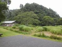 また、雨が落ちて行きました - 千葉県いすみ環境と文化のさとセンター