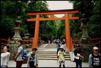 奈良観光-33 - Camellia-shige Gallery 2