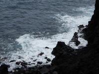 今日も海を眺めました - 三宅島風景