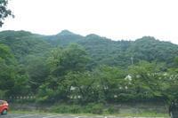 岐阜市の名峰金華山(328.9M)  長良橋付近散策 編 - 風の便り