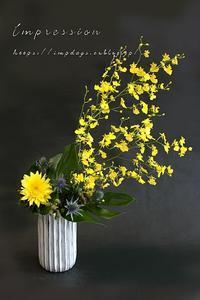 定期装花からオンシジューム - Impression Days