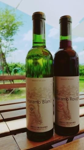 お食事と一緒に美味しいワイン - 【やまなし内藤農園】 Yamanashi Naito Farm  【Farm Diary】☆Peach orchard  in Yamanasihi, Japan☆