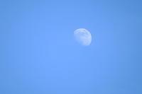 7月12日18時の月 - 平凡な日々の中で
