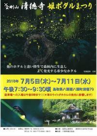 金剛山 清徳寺 姫ホタル祭り - 裏LUZ