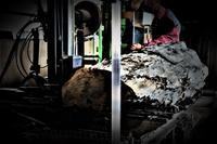 製材したい! - SOLiD「無垢材セレクトカタログ」/ 材木店・製材所 新発田屋(シバタヤ)