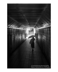 出番待ち - ♉ mototaurus photography