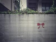 Red ribbon - IL EST TROP TARD     時は過ぎゆく ...