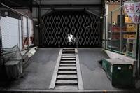 有楽町/丸の内高架下は暗い - 東京雑派  TOKYO ZAPPA