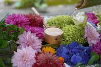 「花手水に蓮花の寺-勝林寺-Bishamonten Shorinji 」 - ほぼ京都人の密やかな眺め Excite Blog版
