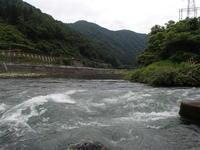 宮川下流漁協釣果2019.07.12-13 - ブラウンなトラウト