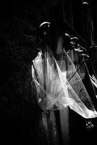 kaléidoscope dans mes yeux20197月の街で#06 - Yoshi-A の写真の楽しみ