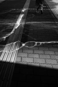 kaléidoscope dans mes yeux2019駅南 #44 - Yoshi-A の写真の楽しみ