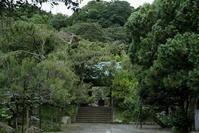 7.14 光則寺 - 週末はソニーα6500でぶらり鎌倉・湘南散歩!