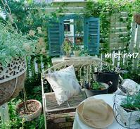 クロスを換えて庭時間を愉しく・・・・・・・・・・... - 花とニャンコと好きなことに囲まれて…♪