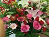 バレエの発表会 - さんしゅゆの花