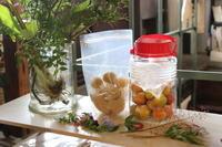 初めての梅しごと at ひねもす食堂 - キラキラのある日々