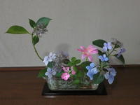 紅茶を美味しく花も脇役 - 活花生活(2)