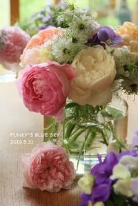 庭の小さなブーケ**(5月31日) - FUNKY'S BLUE SKY