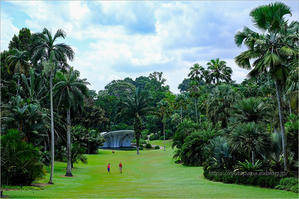 Botanic Gardens -