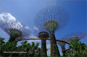Gardens by the Bay -