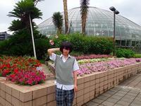 夏休みの始まり - 手柄山温室植物園ブログ 『山の上から花だより』