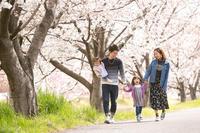 春の家族写真 2019 - YUKIPHOTO/写真侍がきる!
