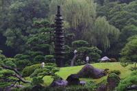 雨の清澄庭園 - お散歩写真     O-edo line