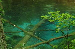 *神秘の青い池* -