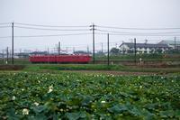 赤い電車とハスの風景 - 感動模写Ⅲ