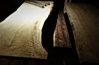 栃  縮み虎杢 - SOLiD「無垢材セレクトカタログ」/ 材木店・製材所 新発田屋(シバタヤ)
