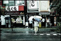 神田散歩-109 - Camellia-shige Gallery 2