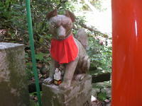 Sasuke Inari Shrine [佐助稲荷神社]/Kamakura [鎌倉]/Kanagawa Prefecture [神奈川県]/2019.05.30 - Research Photo Archive/Gallery