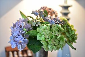 退色した紫陽花を飾りましたⅡ -