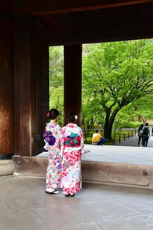 京都旅 2019 その7 - Sauntering