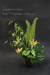 定期装花からエルムレス - Impression Days