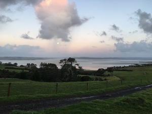 霧雨のファームとミニコンサート/ Misty Farm & Violin Duet Concert - アメリカからニュージーランドへ