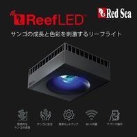 ReefLed!! - アクアタイムズエアー[海水魚・サンゴのブログ]