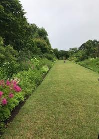 恵泉蓼科ガーデン - 小さな庭 2
