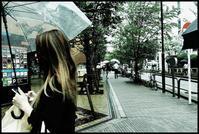 神田散歩-110 - Camellia-shige Gallery 2