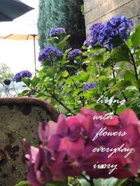 """""""花打ち"""" -  Flower and cafe 花空間 ivory (アイボリー)"""
