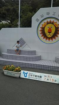 久しぶりに日本平動物園に行きました - ウンノ接骨院(ウンノ整体)と静岡の夜