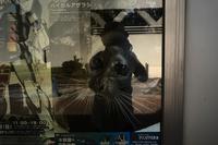 kaléidoscope dans mes yeux20197月の街で#10 - Yoshi-A の写真の楽しみ