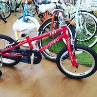 みんなが乗れるルイガノ - 滝川自転車店