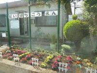 お日様でたぞ~by夏の花たち - 台町公園ブログ