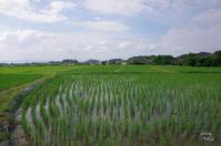 橿原市和田町 - ぶらり記録 2:奈良・大阪・・・