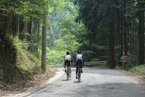 思い出の寺坂峠から夏のいなちくロングライドの上りへ - 自転車コギコギ日記